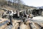 농자재·사유림 복구비 지원대상 제외 '한숨만'