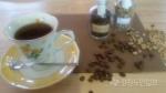 [김명섭 교수의 커피이야기] 20. 칸트, 그 신중함을 위한 커피