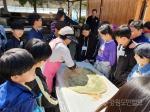 인제 어론초 온마을학교 체험