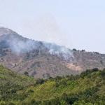 고성 전방 DMZ 북측구역서 산불 당국 예의주시