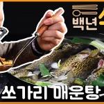 [백년식당] 영월 동강 국자 쏘가리 매운탕