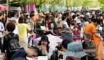 양구 곰취축제 20만명 방문 축제 성료