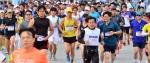 [알립니다] 제20회 강원도민달리기대회