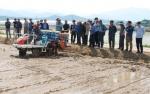 철원 벼농사 생산비 절감 신기술 보급