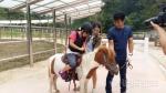 홍천 숲속 동키마을 어린이 체험 학습의 장 인기