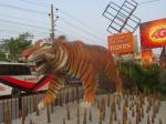 [전운성 교수의 세계농업문명 답사] 2. 맹그러브 숲과 벵골호랑이의 미래