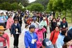 치악산 황장목 숲길 걷기 축제