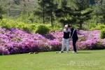 하이원리조트, 소년체전 출전 지역 골프선수 지원
