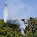 삼척 봉황산 산불…헬기 진화 중