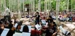 인제 자작나무숲 작은 음악회