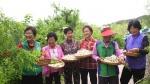 [TV 하이라이트] 문경 동달목 마을 꽃 밥상