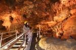 천곡 황금박쥐동굴 재개장