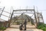 [강원도 평화생명 벨트를 만나다] 2. 고성 DMZ 평화생명벨트