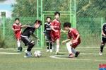 [알립니다]금강배 리틀K리그 전국 유소년축구대회