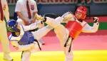 춘천 코리아오픈 국제 태권도대회