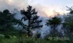 영월 창원리 산불 발생