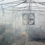 양구 양계장서 불…닭 2만5천 마리 소사