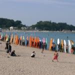 동해바다 지키는 '쓰레기 제로' 축제