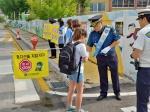 평창초교 스쿨존 교통안전캠페인