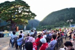 영월 산솔마을 소나무축제