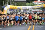 평창 하프마라톤대회
