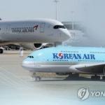 '1천억 적자' 대한항공·아시아나, 국내선 화물서비스 일부 중단