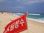 수영 금지에도 물놀이·송림서 취사 무법 천지된 해수욕장
