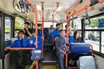 시내버스 노선개편 체험행사