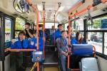 버스 1대당 고정기사 2명 '책임배차제' 도입