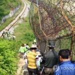 고성 DMZ 평화의 길 추석 연휴 임시 중단