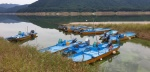 태풍 '링링' 대비 모여있는 배