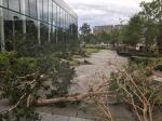 태풍 파사이, 日수도권 강타…트럭 넘어지고 강풍에 사람 날아가