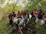 강원랜드 환경정화 봉사활동