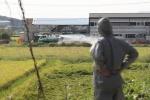 연천서도 아프리카돼지열병…확산 우려속 6개 시·군 집중 방역