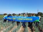 농협강릉시지부 농촌일손돕기