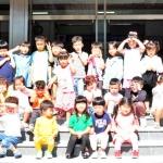 인제경찰서 어린이 교통안전교육