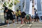 평창 올림픽 레거시 페스티벌