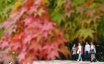 가을 손짓