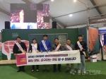 횡성선관위 깨끗한 선거 홍보캠페인