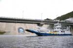 화천 평화의 댐 인근 긴급 방역