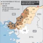 철원 멧돼지 폐사체 돼지열병 양성 확진 '강원 방역 비상'