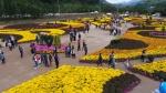 인제 가을꽃 축제 폐막