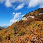 설악산 단풍 절정…만산홍엽 계곡마다 등산객 북적