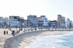 안목해변 해안침식 재발 대책마련 시급