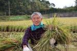 대농의 꿈을 이룬 김광섭 쌀전업농중앙회장