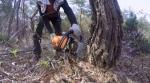 [TV 하이라이트] 거목과 사투 벌이는 벌목공
