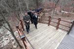 양구 광치휴양림 노약자 맞춤형 산책로 조성