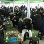 양양 '도루묵축제&비치마켓'성료