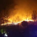 강릉시 죽헌동 인근 야산 산불 발생… 2시간10분여만에 진화