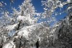 """""""도로 결빙 조심하세요"""" 강원 산지·내륙 비 또는 눈"""